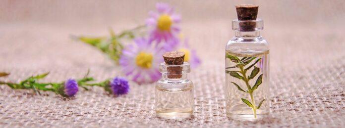 L'huile de Tea Tree un aperçu de la médecine aborigène